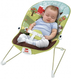 Infant Bouncy Seat