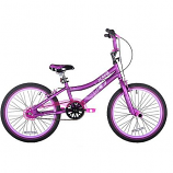 Children's Girls Bike Rental 20""